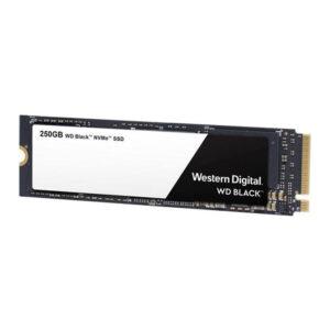 WDS250G3X0C